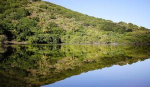 Nature hike on Jost van Dyke