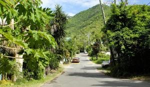 Street in Apple Bay