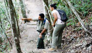 Medicinal Trail Chaa Creek Lodge