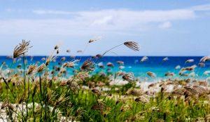 Weekends in Curacao