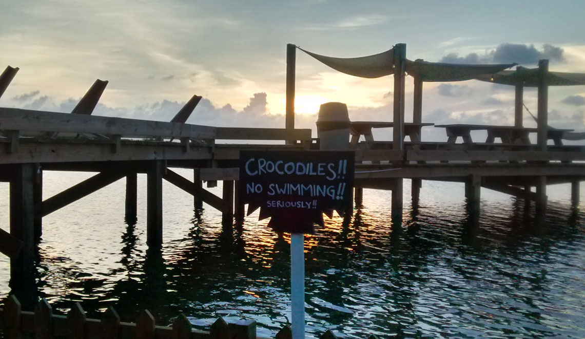 truck-stop-crocodiles-ambergris-caye-belize