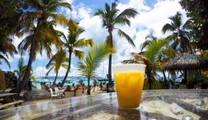Drink Painkillers at White Bay Jost van Dyke