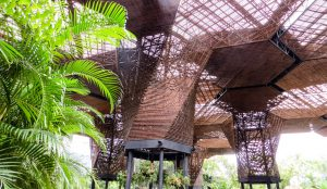 colombia-medellin-jardin-botanico
