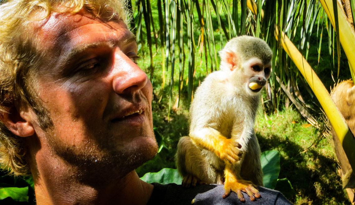 Monkey Jungle in Cabarete Dominican Republic