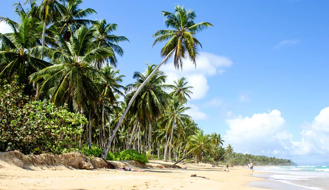 Palm lined Playa Coson in Samana
