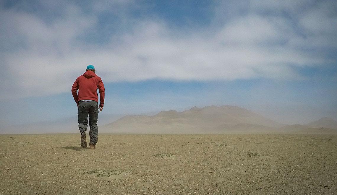 Northern Peruvian Desert at Chicago