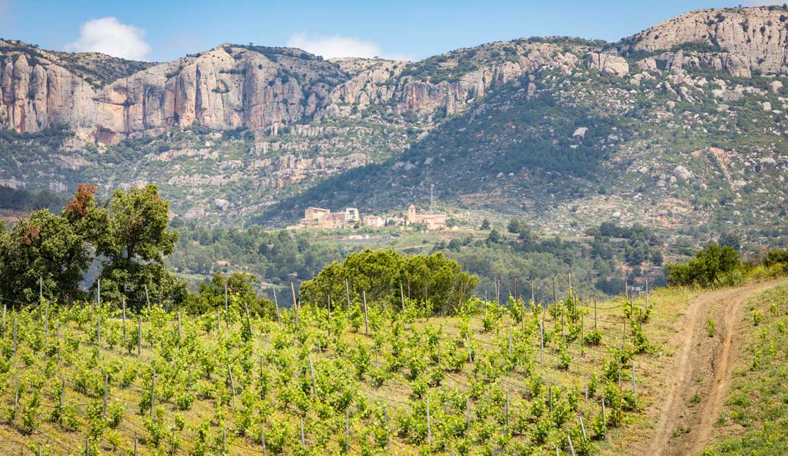 The Priorat and Montsant wine region in Tarragona