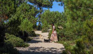 Hiking in the dunes of Fonta da Telha