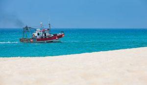Sandy beaches of Troia