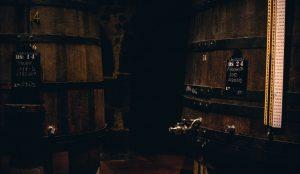Visit the Porto wine cellars