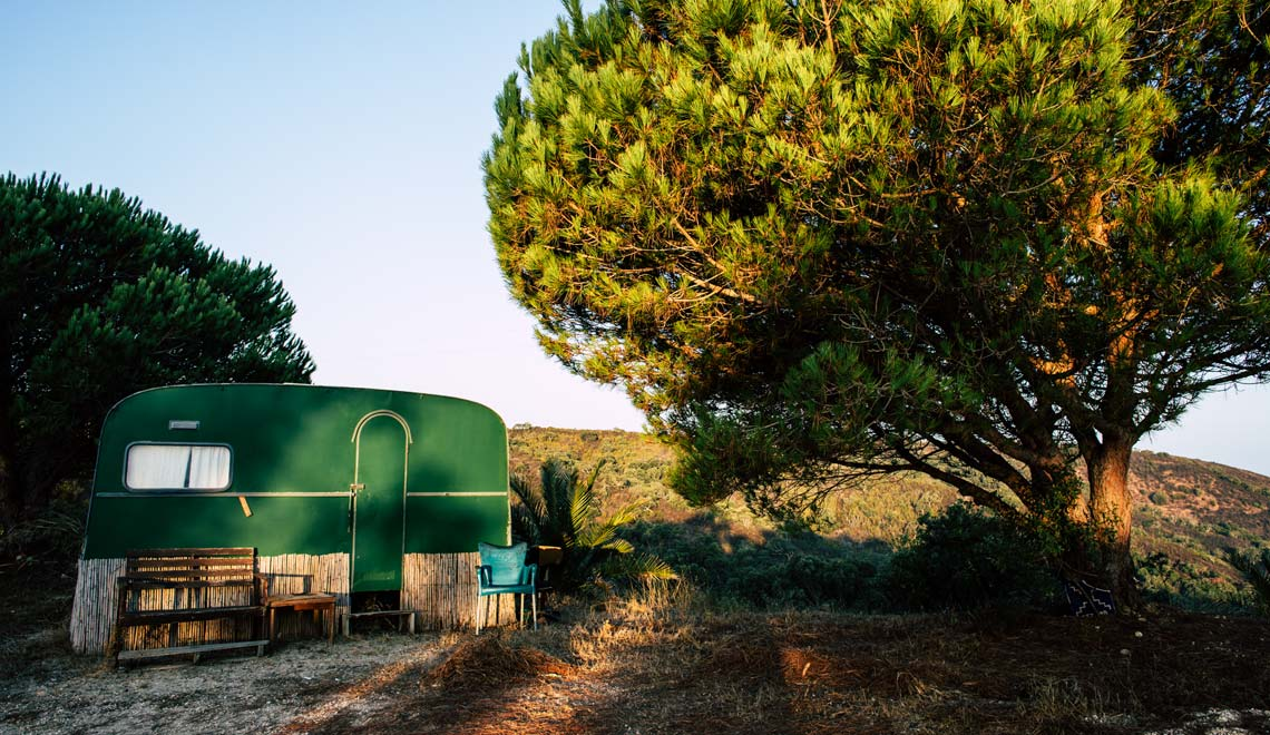 Home in a forest in the Algarve